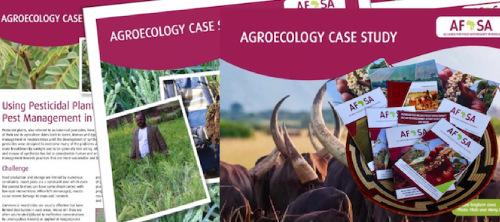 Documenting case studies